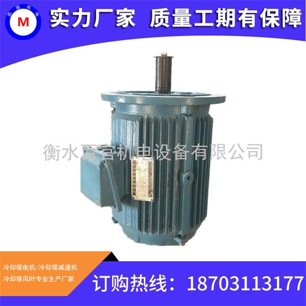 6 YCCLP电机