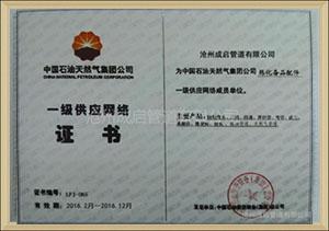一级供应网络证书
