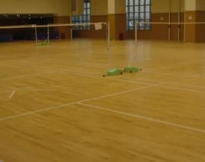 羽毛球場地板